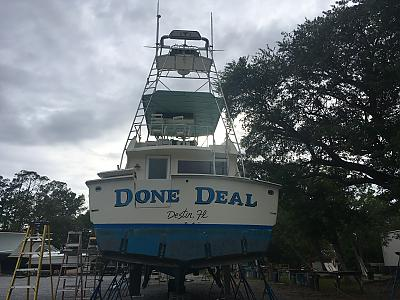Done Deal in the yard